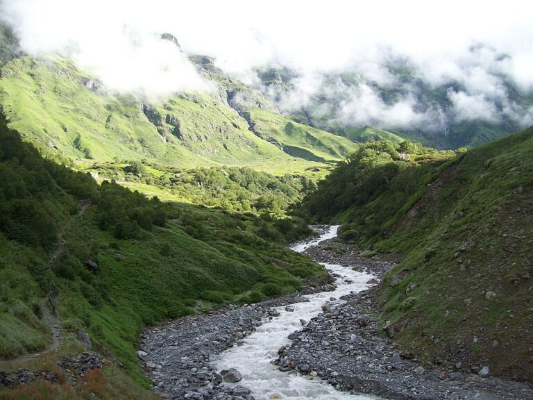 Valley of Flowers; see trek in left-hand side and valley in front