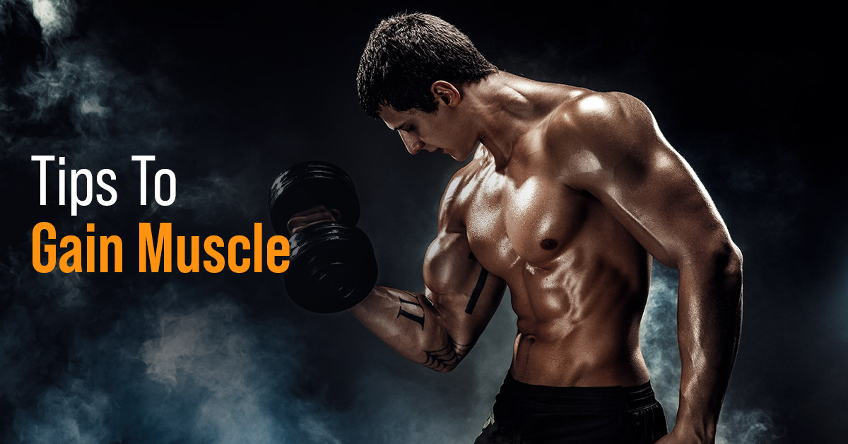 Tips To Gain Muscle